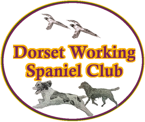Dorset Working Spaniel Club